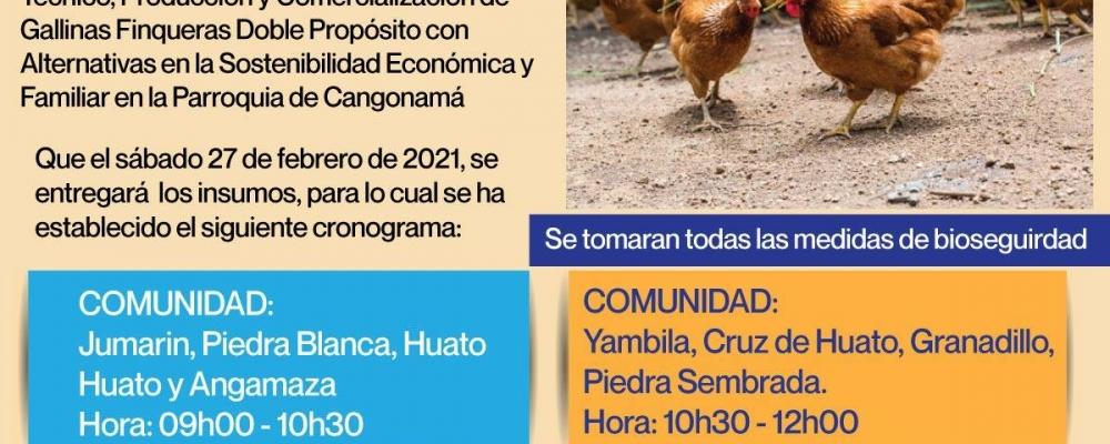 DESARROLLO AGROPECUARIO MEDIANTE EL MANEJO TÉCNICO, PRODUCCIÓN Y COMERCIALIZACIÓN DE GALLINA FINQUERAS.